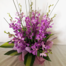 orchid-purple